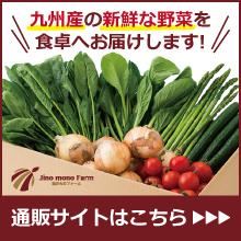 九州野菜の通販、お取り寄せ|地のものファームオンラインショップ