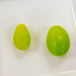 左が一般的なシャインマスカットの粒<br /> 右が販売している贈答用シャインマスカットの粒です。